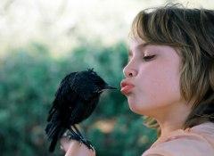 Filmfoto: Kauwboy – Kleiner Vogel, großes Glück